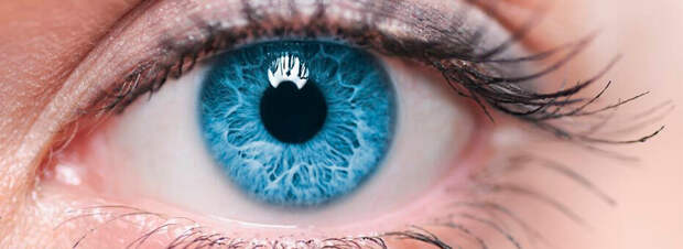 Глаукома: симптомы, причины развития и лечение глаукомы