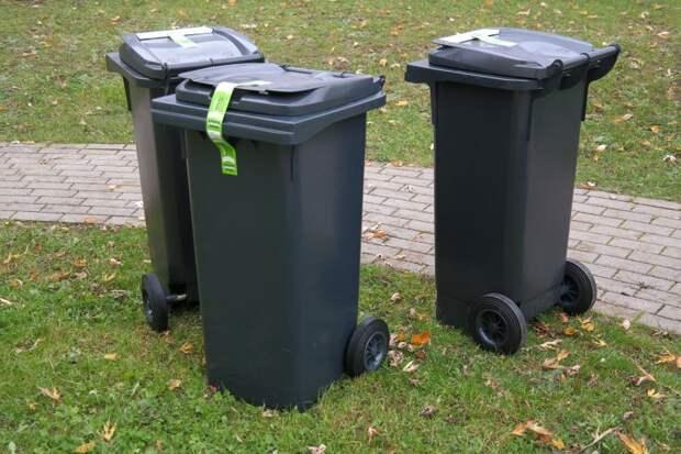 В парке «Березовая роща» установили мусорные контейнеры