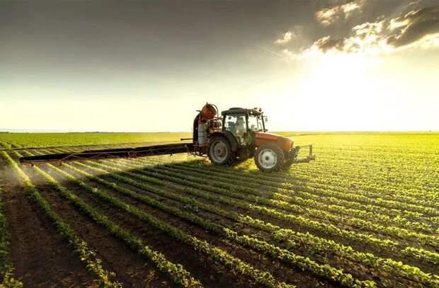 Минсельхоз завершил процедуру оценки заявок на дизельное топливо