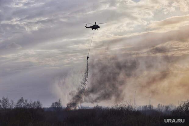 Тюменские власти арендуют вертолеты для тушения лесных пожаров