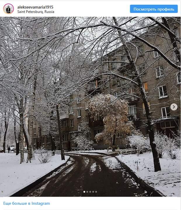 Петербург неожиданно встретил зиму