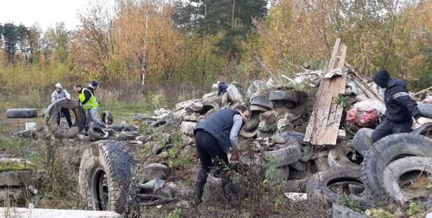 Почему жителям Приморского района приходится самим разгребать свалки?