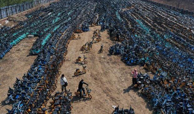 Кладбища брошенных велосипедов в Китае растут как грибы после дождя