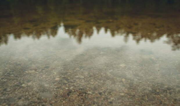 Подготовка к очистке Черноисточинского пруда началась под Нижним Тагилом