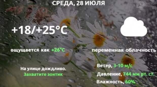 Прогноз погоды в Калуге на 28 июля