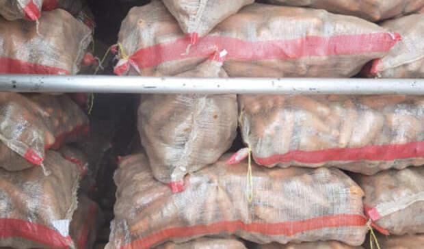 На границе Оренбуржья с Казахстаном «забраковали» более 138 тонн опасной продукции