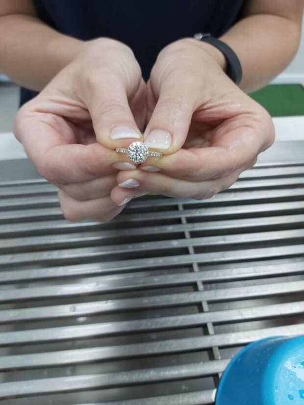 Проглотила, глазом не моргнув! Хозяйка «потеряла» обручальное кольцо, а всему виной её любимая собака