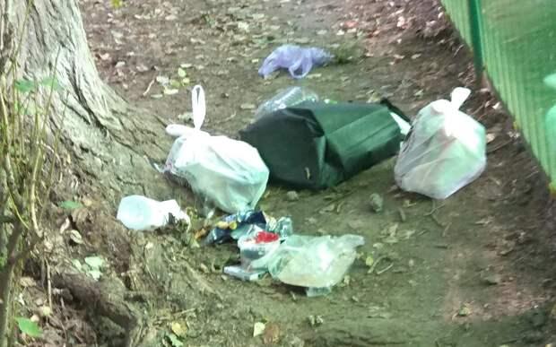 На бульваре Генерала Карбышева после жалобы жителей трехдневный мусор убрали