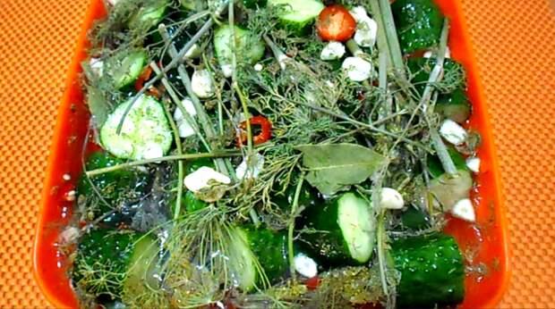 Рецепт малосольных хрустящих огурцов на минералке за сутки