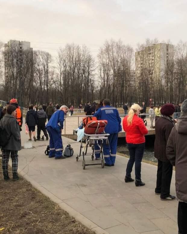 В парке «Торфянка» юноша утонул при спасении собаки