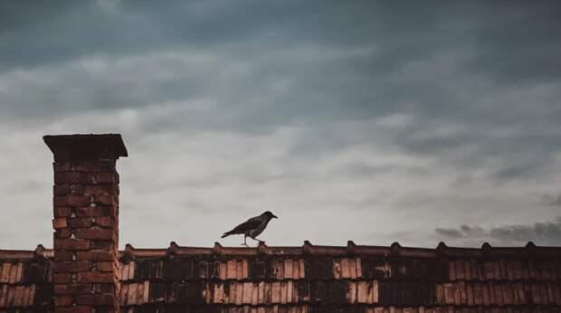 Дети пытались прорваться на крышу дома на Нансена с помощью матов