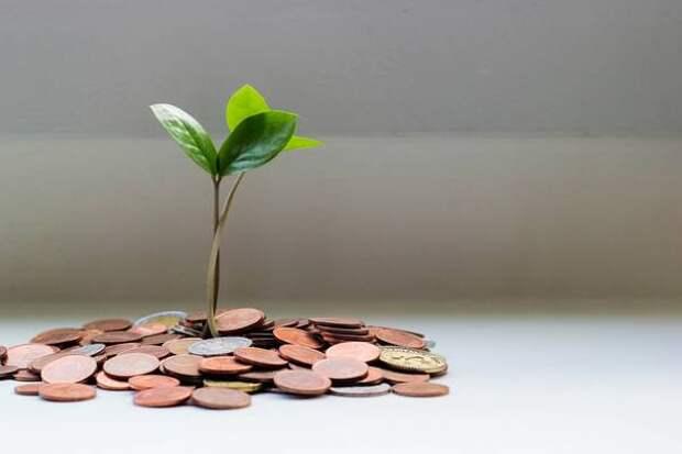 Как выбрать вклад вбанке: капитализация, доходность, страховка