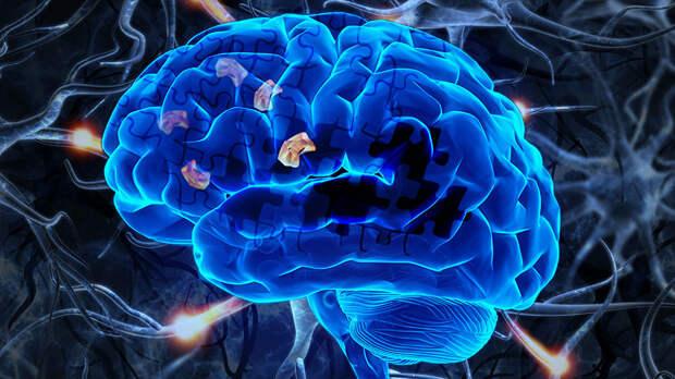 Ученые научились выявлять ранние признаки болезни Альцгеймера за 10 минут
