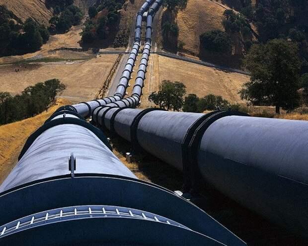 В Германии назвали нонсенсом плату Украине за транзит газа РФ