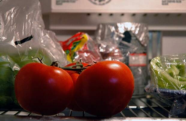 В холодильнике неподходящая температура для помидоров. / Фото: kakhranit.ru