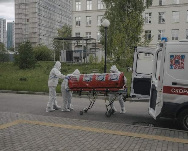 Виновных ищут: возбуждено дело о краже данных пациентов с COVID-19 в Москве