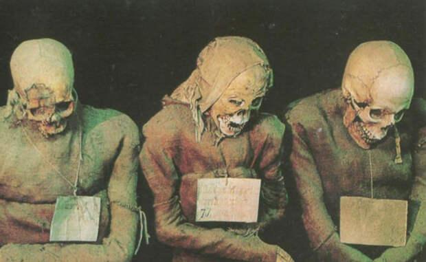 Пугающие факты о настоящих мумиях, известные науке