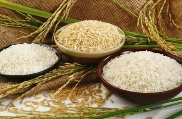Рис помогает оздоровить рацион питания