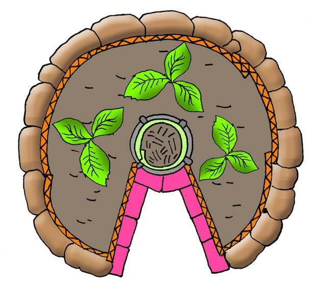 Овощи сквозь замочную скважину