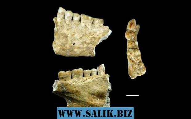 Запломбированные зубы найденные в Италии.