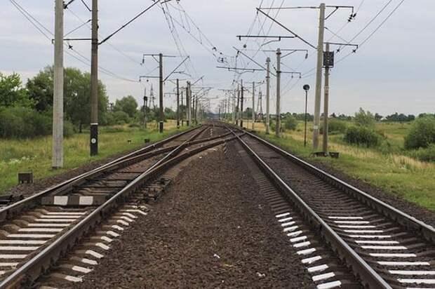 Электричка насмерть сбила пенсионера в Ленинградской области