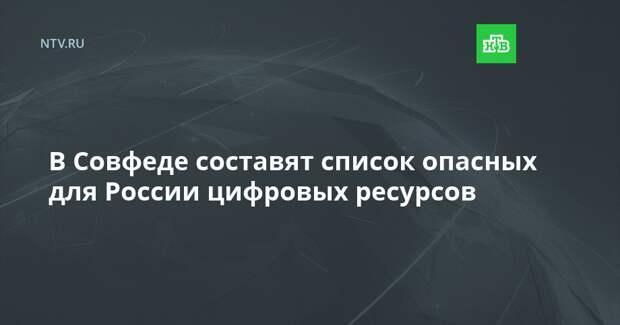 В Совфеде составят список опасных для России цифровых ресурсов