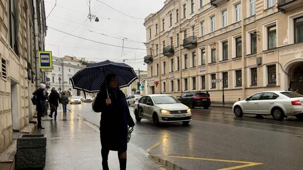 В Петербурге с начала мая выпала почти месячная норма осадков