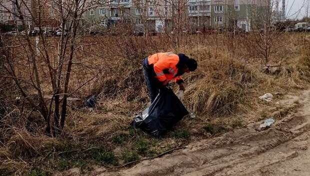 Три пустыря в микрорайоне Кузнечики очистили от мусора