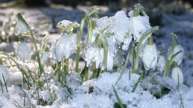 Следующая неделя принесет в Красноярск аномальные морозы