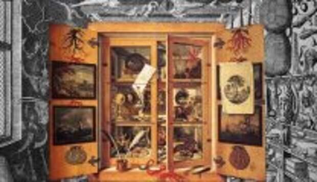 Современное искусство: Что такое кунсткамера: Как появились первые Музеи До-Модерна и что в них хранилось