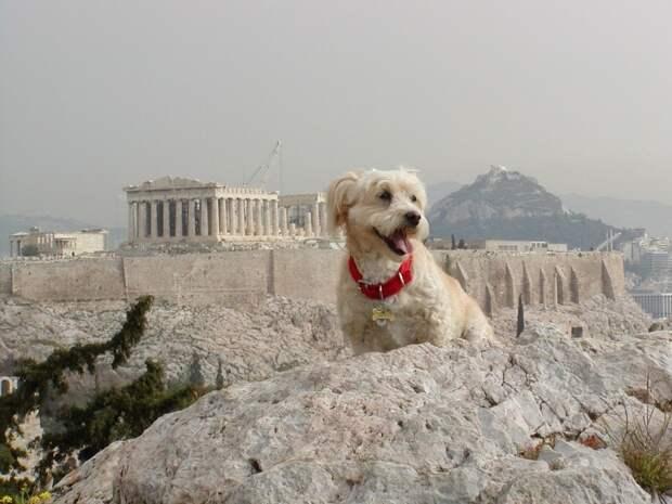 Greece21 30 поводов влюбиться в Грецию