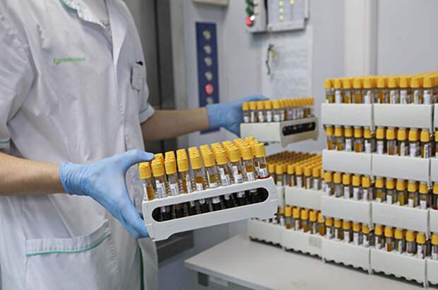 В России за сутки выявили 8386 новых случаев заражения COVID-19