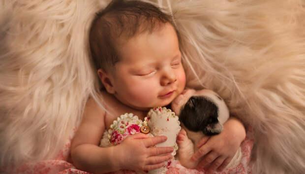 Когда милее некуда: объятия новорожденных и питомцев в проекте фотографа из Лондона