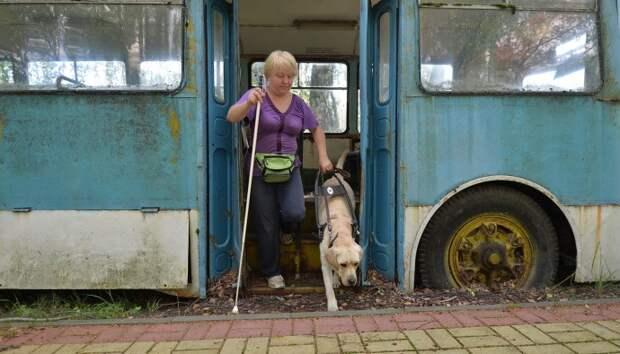 Собаки-поводыри: Истории тех, кто стал глазами незрячих