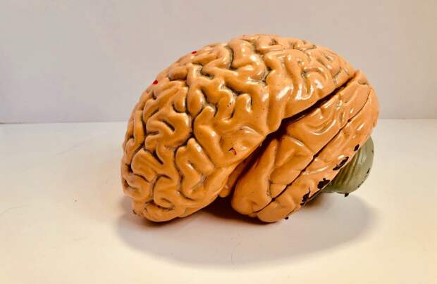 Персонализированная стимуляция мозга облегчает симптомы тяжелой депрессии