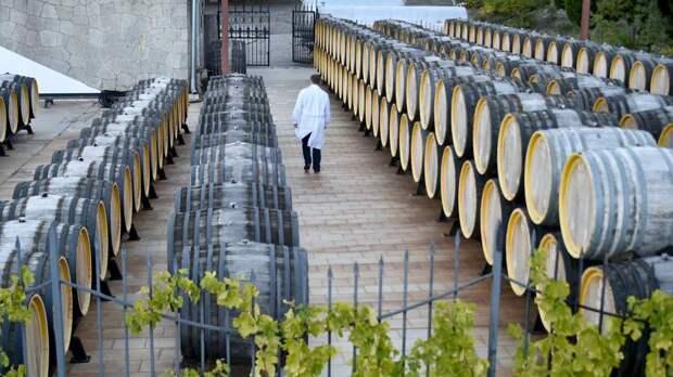 Бокальный смотр: вино хотят разрешить продавать на специальных ярмарках