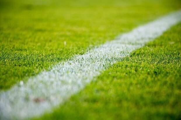 Открылся набор в спортивные секции стадиона «Свиблово»