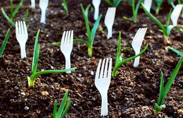 Из подручных средств. 20 инструментов для огорода, которые почти ничего не стоят