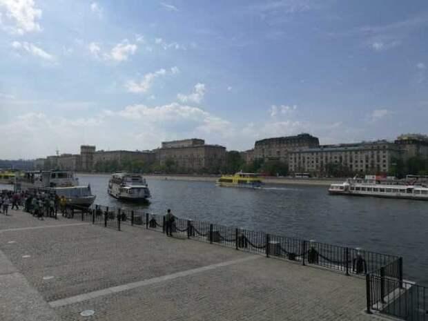 МЧС предупредило москвичей о сильном ветре до вечера среды