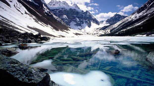 Три неопознанных объекта нашли в озере на Алтае