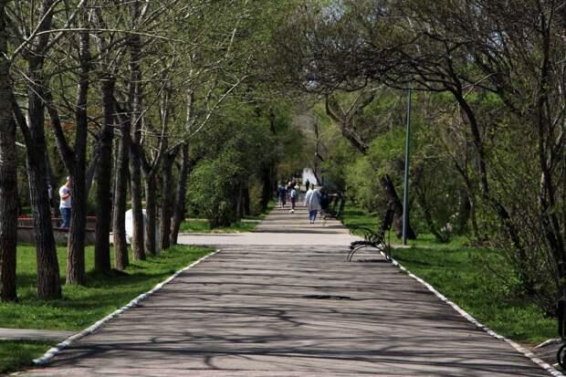 380 случаев коронавируса выявили в Иркутской области за сутки