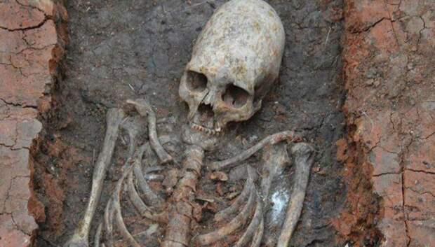 Ученые нашли и расшифровали самую древнюю ДНК в мире
