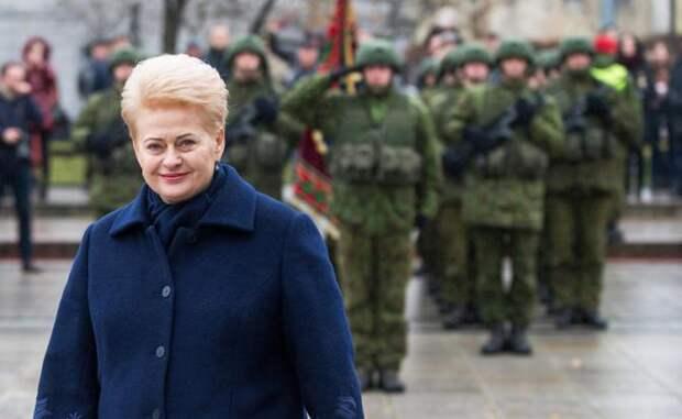 На фото: президент Литовской Республики Даля Грибаускайте