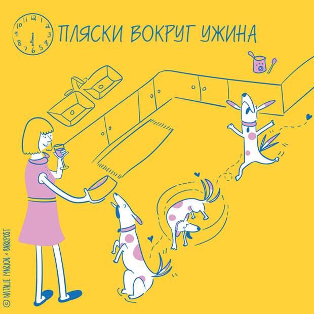 Жизнь хозяйки собаки в 10 очаровательных иллюстрациях