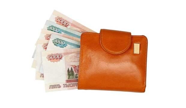 В России введут минимальный гарантированный доход