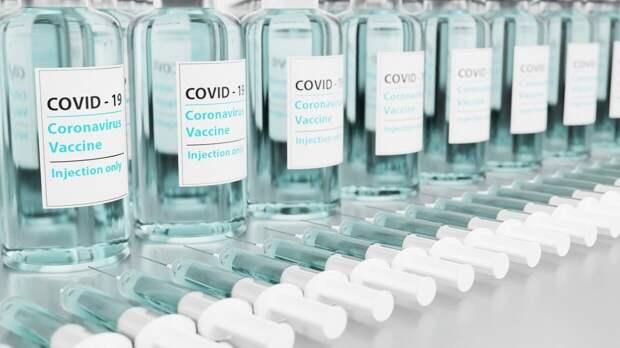 Еще одну вакцину от коронавируса запустят в гражданский оборот в России