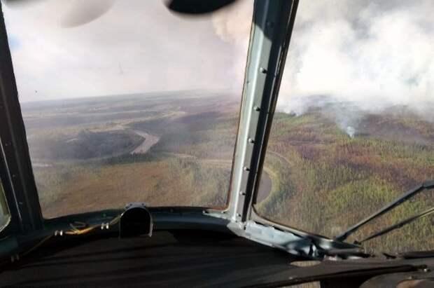 В России за сутки ликвидировали 58 лесных пожаров