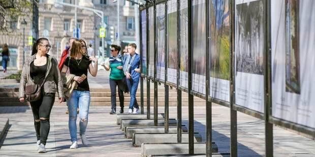 В сквере по Олонецкому проезду обновили фотовыставки