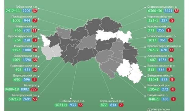 ВБелгородской области откоронавируса скончалась жительница Пермского края