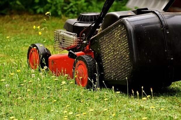 В Мишином проезде коммунальщики привели в порядок газон